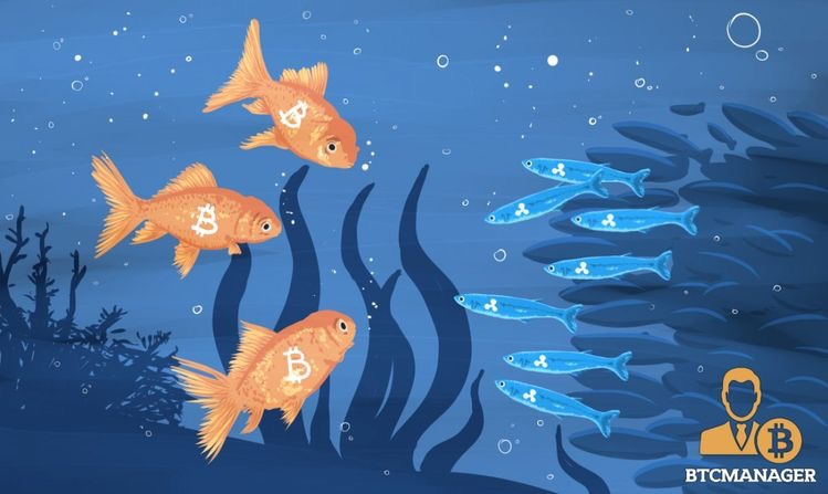 86431CA4 23FD 42FA 8201 B192EA7F0F1A - و دوباره کشف وضبط دستگاه ها اینبار راه یافتن ماینرها به استخر های پرورش ماهی!!!!