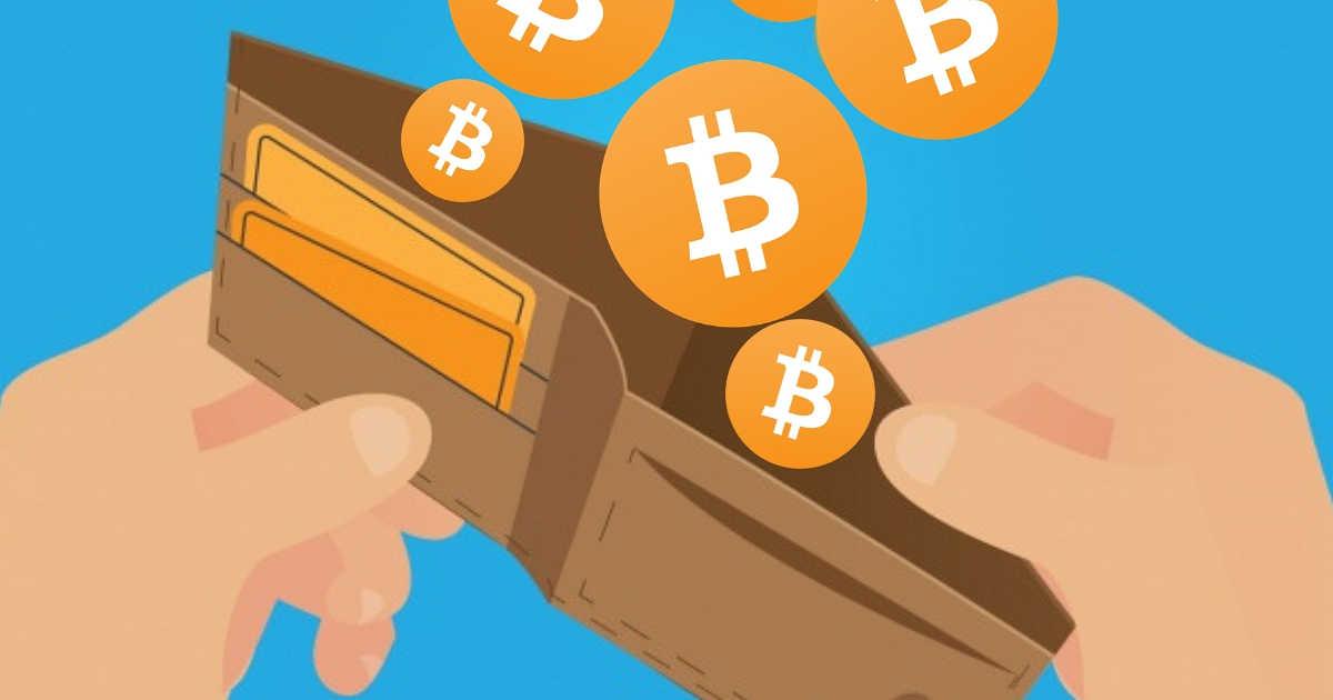 BTC wallet - یک کیف پول ناشناس مبلغ 219 میلیون دلار بیت کوین دریافت کرده است