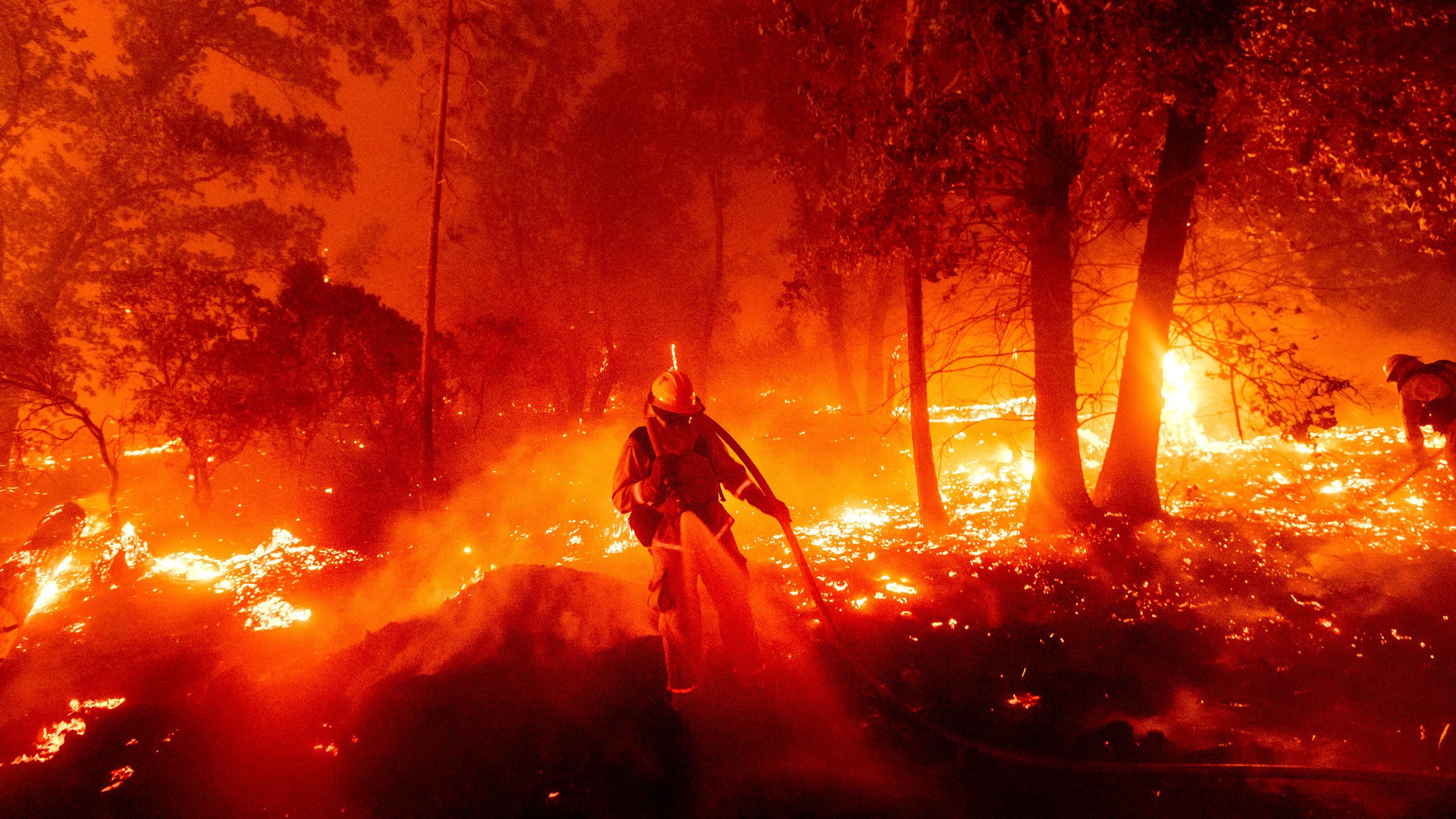 WestCoast - فیسبوک ادعاهای کذب درباره ی آتش سوزی های West Coast را مسدود می کند