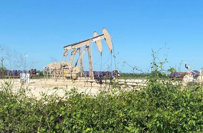 نفت اوپک کرونا - تحلیل تکنیکال نفت وست تگزاس اینترمدیت (WTI)؛ پنجشنبه ۲۹ آبان