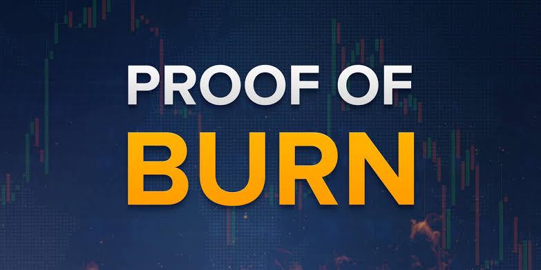 E452C890 A59E 4D36 AC59 3A1D5F22A15A - اثبات سوختگی (Proof of Burn) چیست؟