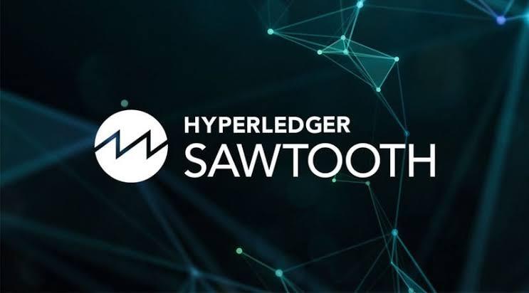 EDD800D4 810F 4C14 9C54 3EE3D8D38473 - توضیحاتی پیرامون Hyperledger Sawtooth