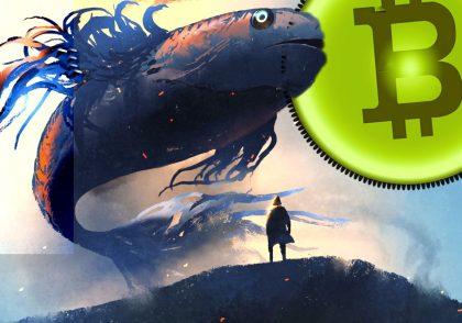 نهنگ 1 420x294 - آموزش ارز دیجیتال