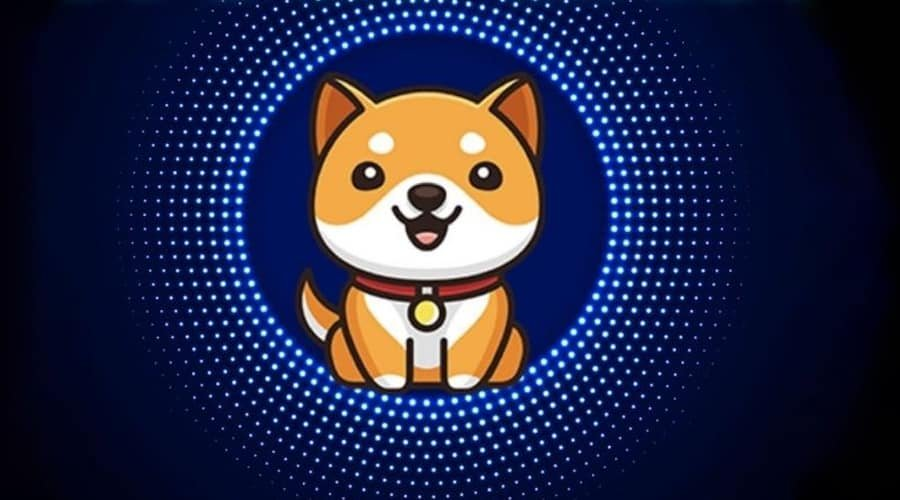 Baby Doge Cryptocurrency - Baby Doge Coin اکنون بیش از 370،000 هولدر دارد