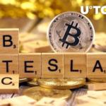 Teslas Bitcoin Holdings 150x150 - نظرات ایلان ماسک در مورد هولد بیت کوین در تسلا