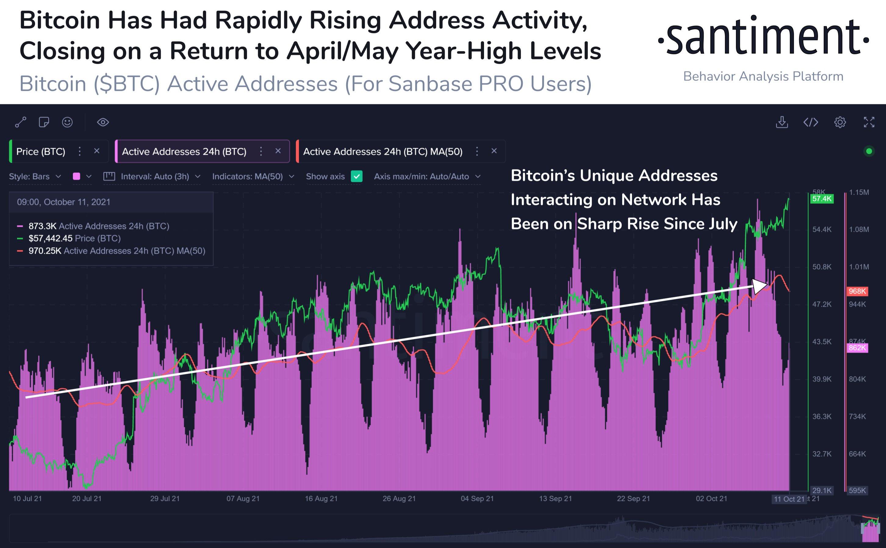Bitcoin BTC Address Activity - این داده های شبکه ای چشم اندازی صعودی را برای بیت کوین نشان می دهند