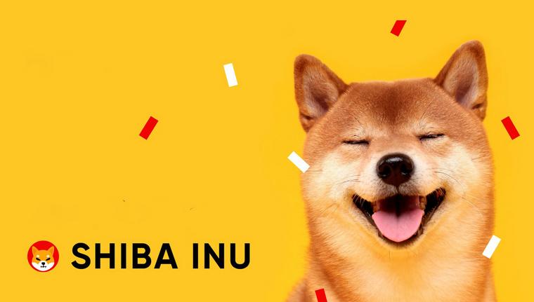 shiba - تحلیل تکنیکال شیبا اینو(SHIB)؛ شنبه ۱ آبان